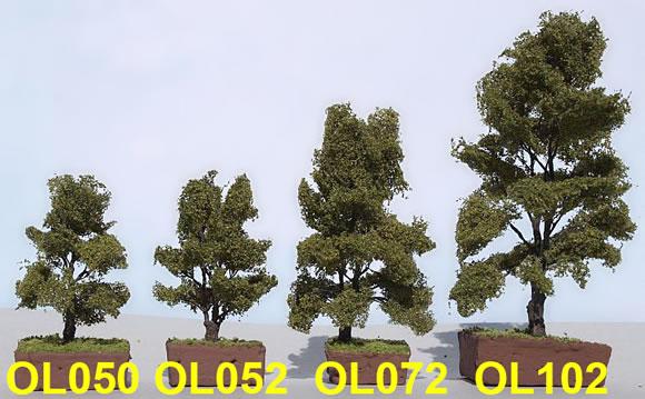 les arbres de Model-scene